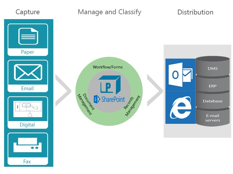 SharePoint services for finance institution and Ecm for regulatory need
